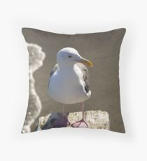 Seagull from Avila Beach, CA Throw Pillow