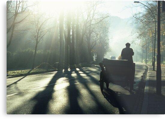 Road Traffic by Kasia Nowak