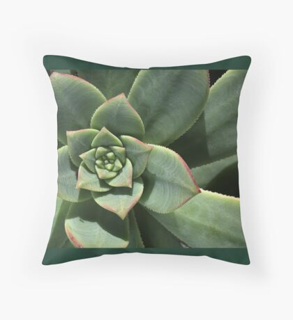 Greens Of Hens And Chicks Floor Pillow