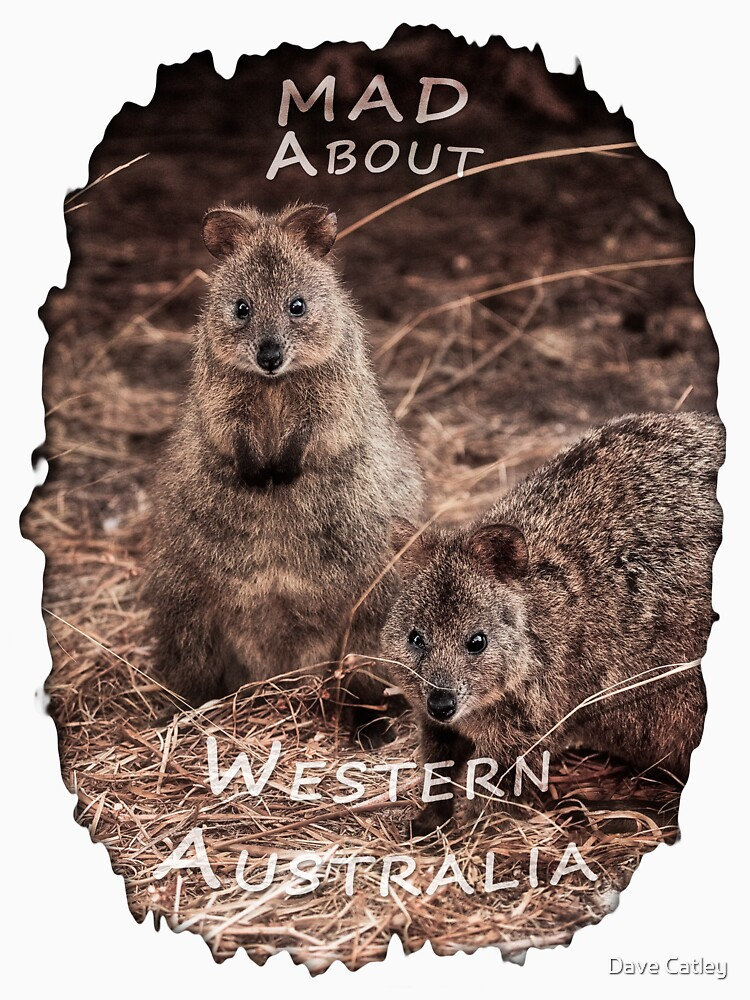 Quokkas - MAD About Western Australia by MADCAT