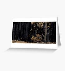 Victorian Bushfires Greeting Card
