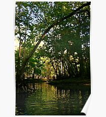 Springtime on the Hillsborough River Poster
