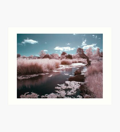 Little Pink River Art Print