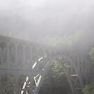 Bridge of Fog by Laddie Halupa