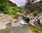 The Verne river at springtime by Patrick Morand