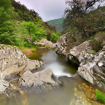 The Verne river at springtime by patmo