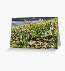 Easter Bunny in the Spring Daffodils Greeting Card
