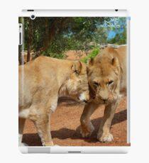 Lionesses iPad Case/Skin