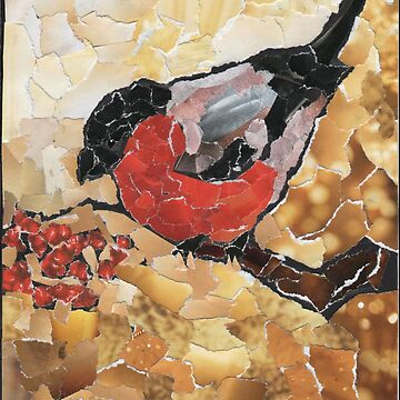 Bullfinch by Elenanaylor