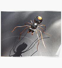 Red Back Spider Poster