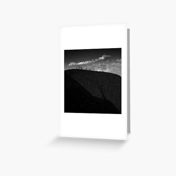 Trees in Flinders-15 Greeting Card