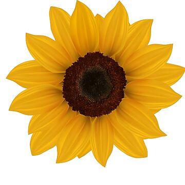 sunflower by SKETSIE
