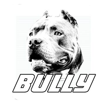 American Bully dog by ritmoboxers