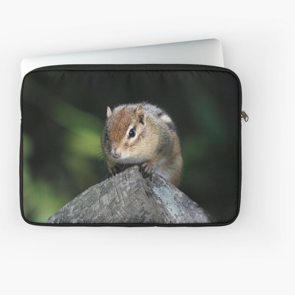 Chipmunk perched on a post Laptop Sleeve