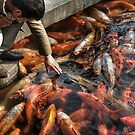 Man of the Fishes by RoamingRoan