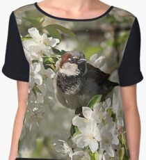 Male house sparrow and spring blossoms Chiffon Top