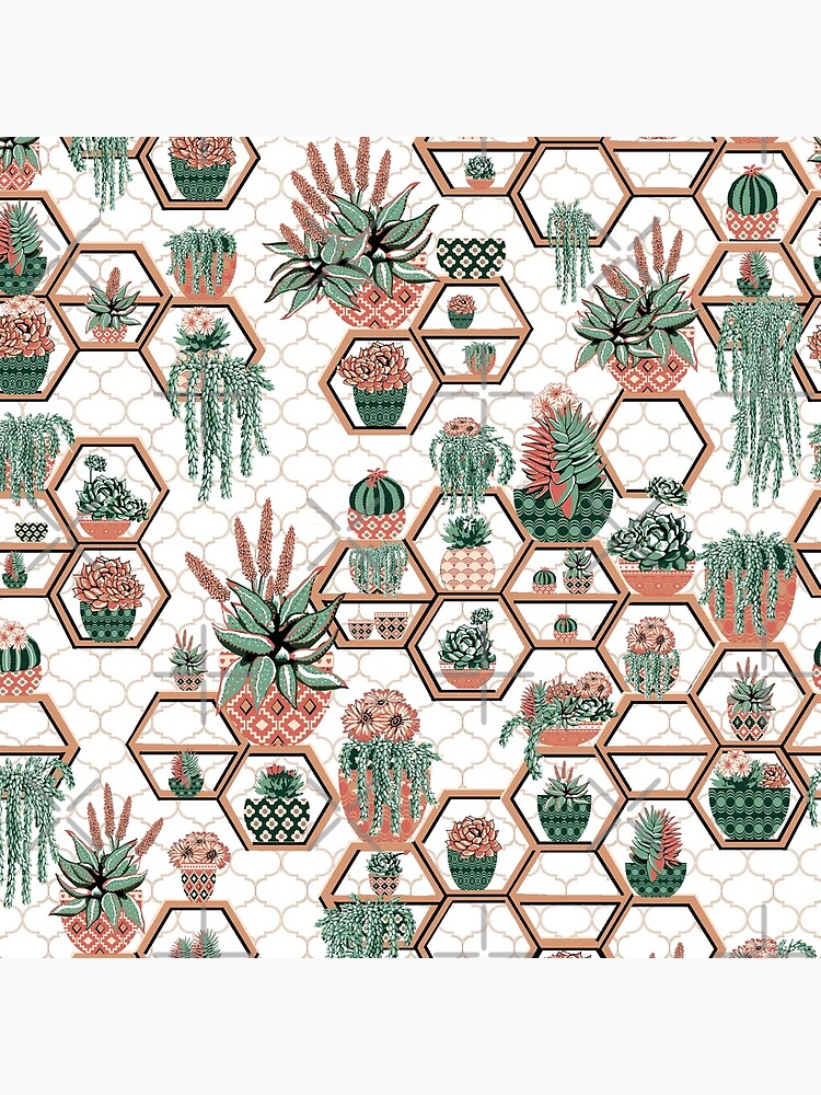 hexagon geometric pattern, 2020, cacti garden, Cacti and Succulent Garden by MagentaRose