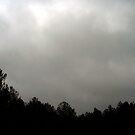 Storm Clouds by preciouspea