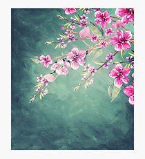 Vintage Garden (Peach Blossoms) Photographic Print