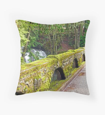 Whatcom Falls Bridge-Above Throw Pillow