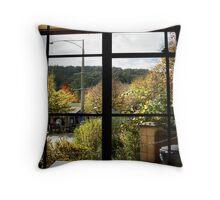 Marysville views Throw Pillow