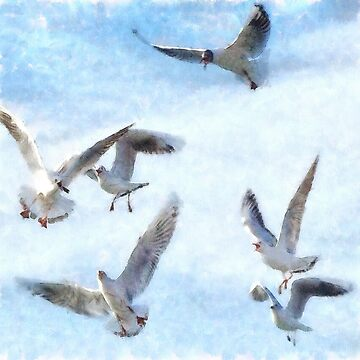 Gulls In Flight Watercolor by taiche