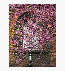 greenwich village church Photographic Print