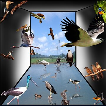 Birds - Yes! by davidfraser