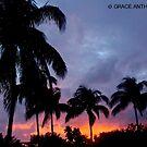 Miami Beach Sunset by Grace Anthony Zemsky