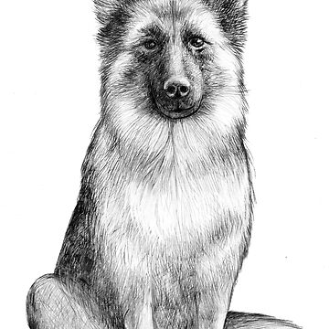 german sheppard by PineLemon