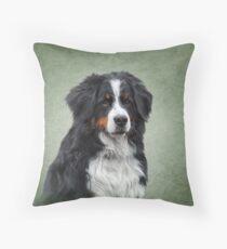 Berner Sennenhund. Zeichnung, lustiger Hund der Illustration Bodenkissen