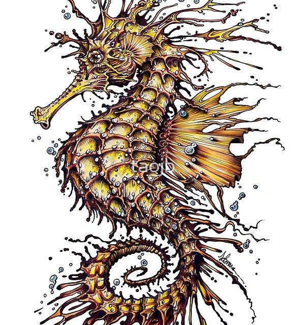 Seahorse by taojb