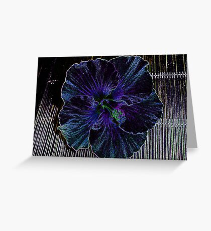 Blue Lady Hibiscus Greeting Card