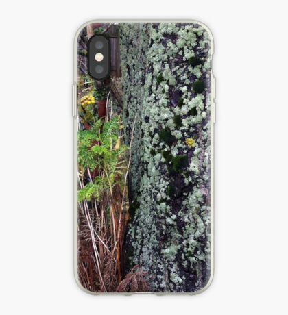 Fall duo iPhone Case