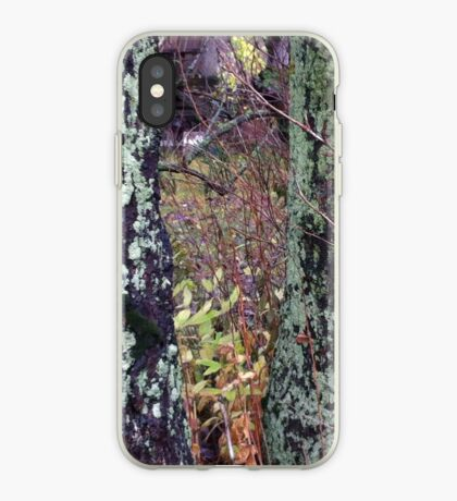 Mossy trunks iPhone Case