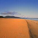 Luskentyre  Beach by Alexander Mcrobbie-Munro