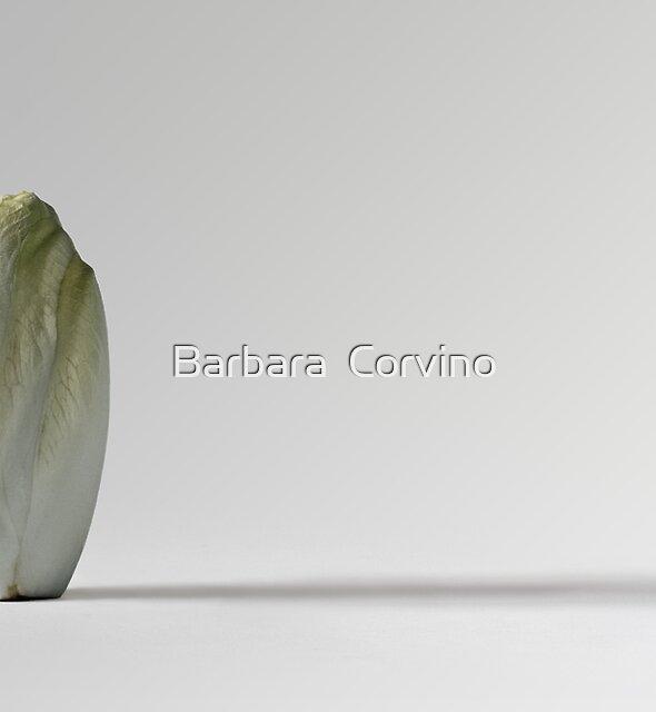 Belgian endive by Barbara  Corvino
