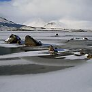 Blackmount Snowbound by Alexander Mcrobbie-Munro