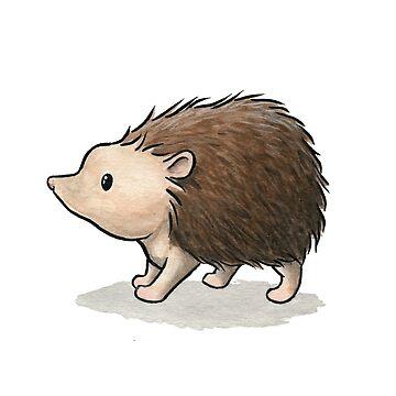 Hedgehog by Mary-Barrows