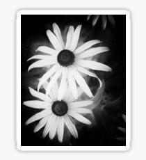 Daisy Pinhole Sticker