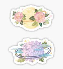 Flower planets Sticker