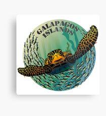 Sea turtle and fish Galapagos Islands Metal Print