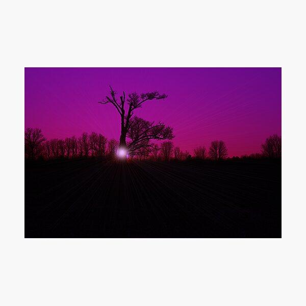 Entish Sunset Purple Haze Photographic Print