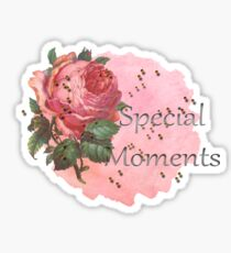 Special Moments Sticker