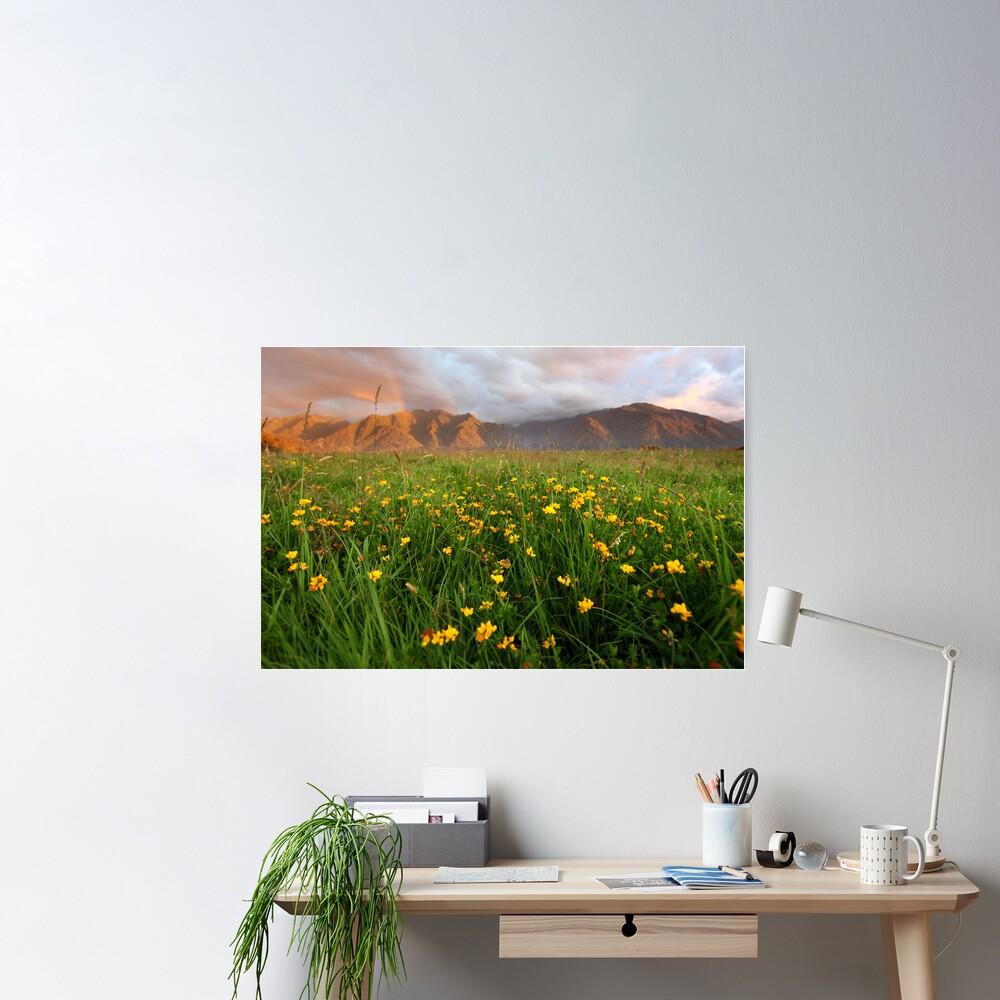Wild Flowers, Fox Glacier Valley, South Island, New Zealand Poster