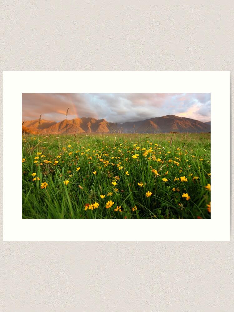 Alternate view of Wild Flowers, Fox Glacier Valley, South Island, New Zealand Art Print