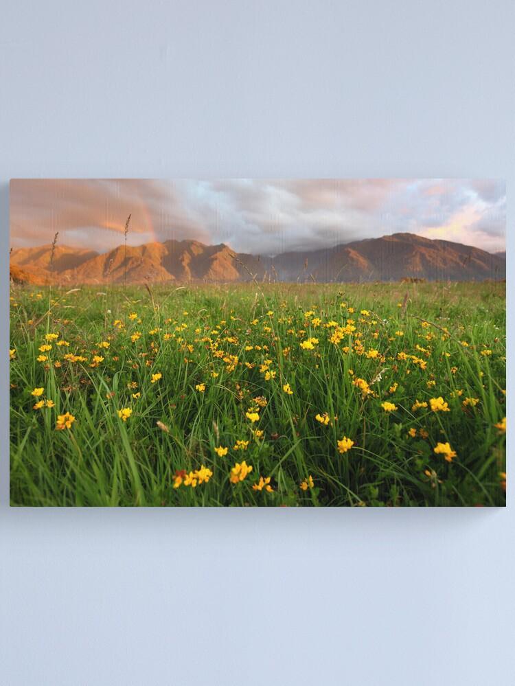 Alternate view of Wild Flowers, Fox Glacier Valley, South Island, New Zealand Canvas Print