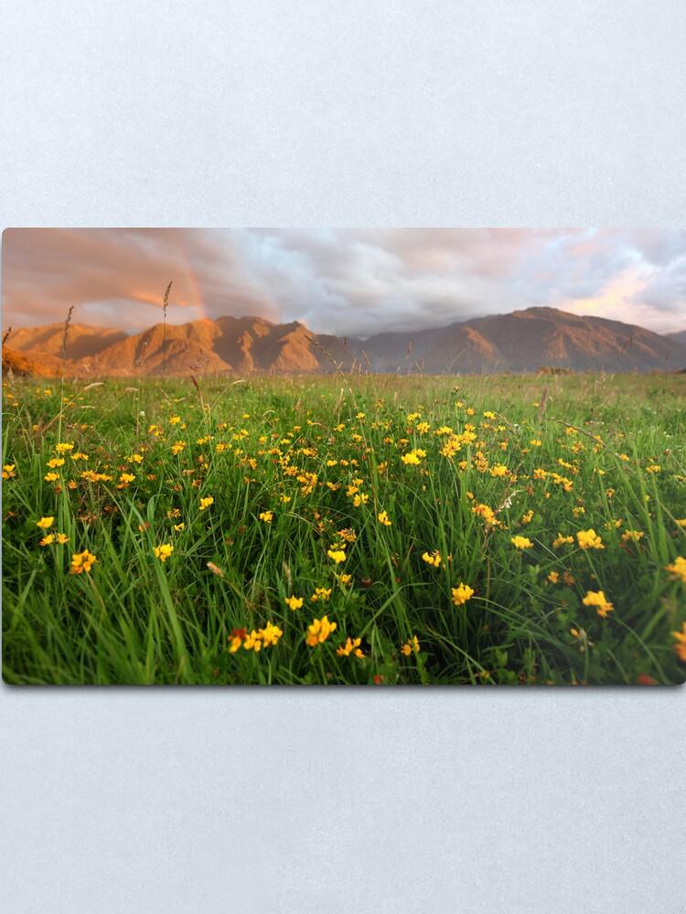Alternate view of Wild Flowers, Fox Glacier Valley, South Island, New Zealand Metal Print