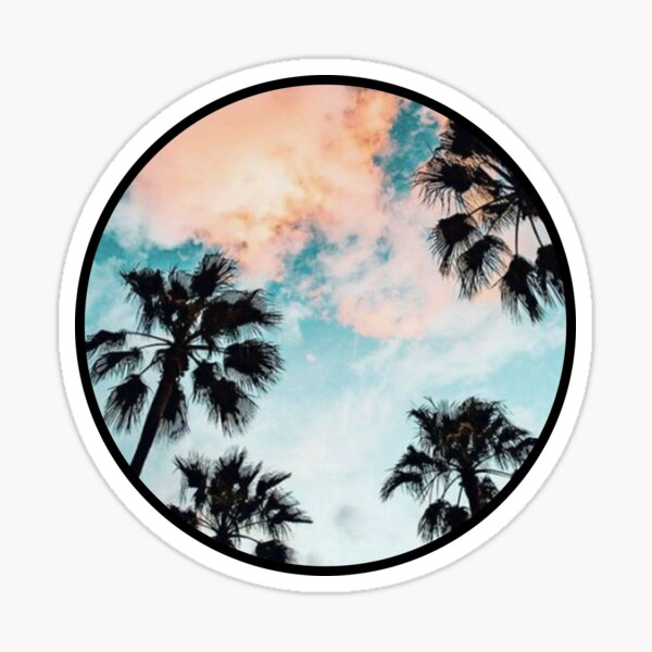 Sunset Palm Tree Circular Sticker