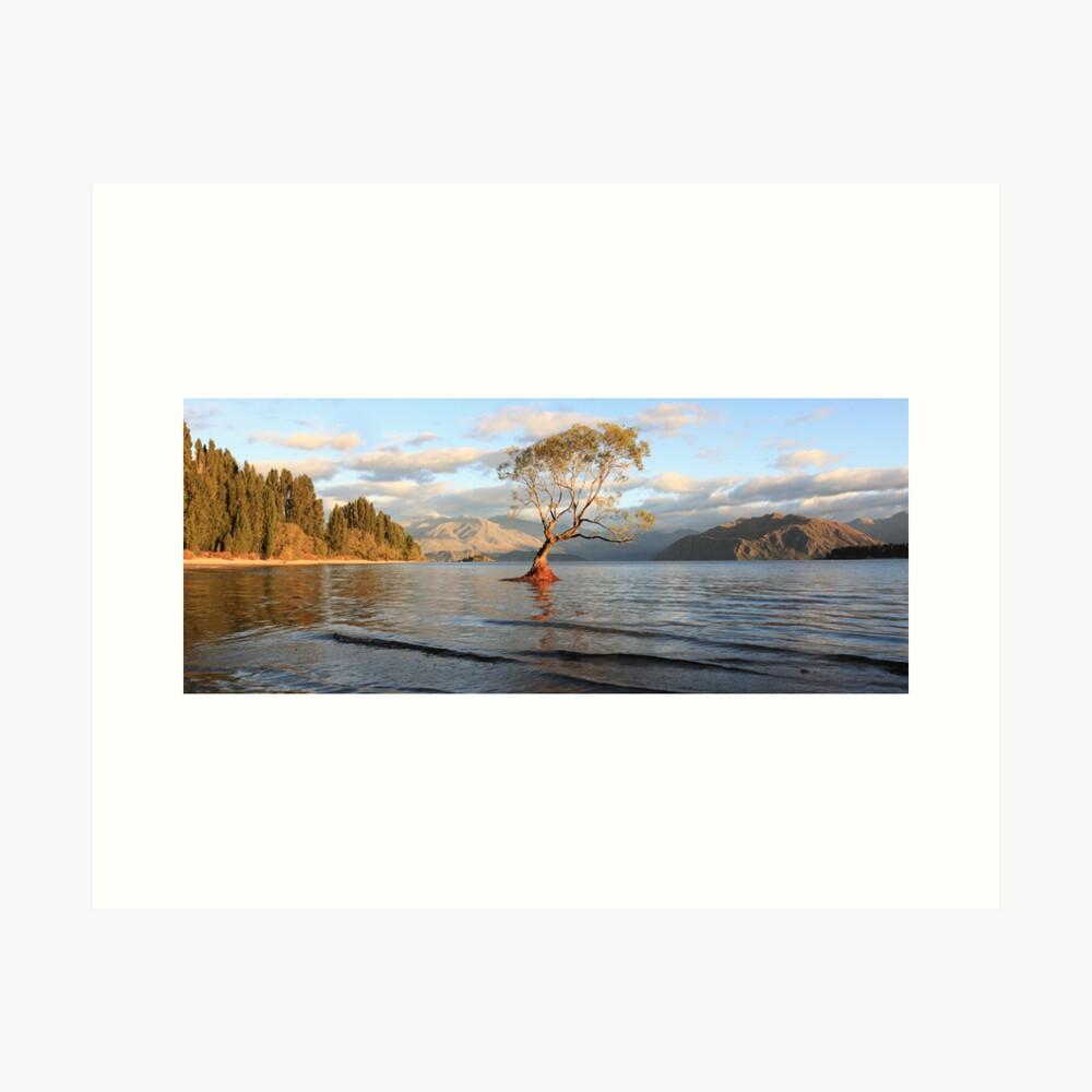 Lake Wanaka, South Island, New Zealand Art Print